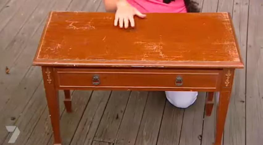 table lit chien