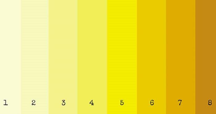les-couleurs-des-urines-et-leurs-significations-1